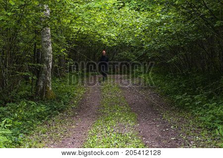 Hazel shrubbery covers a gravel road. Dark light. A fuzzy person walks on the road.