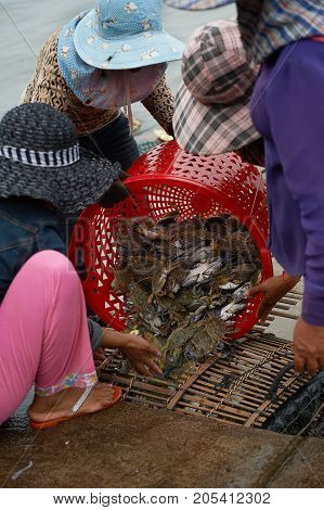 Women in hats with catch of crabs at the sea shore