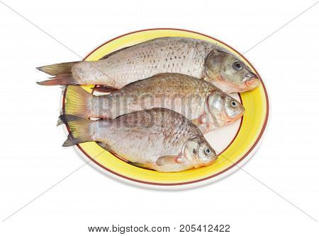 One carp and two crucian carps different sizes with peeled scales and prepared for cooking on a yellow dish on a white background