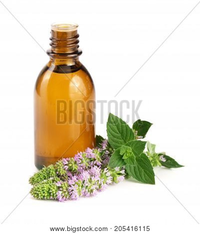 bottle of peppermint oil and fresh mint isolated on white background.