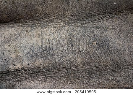 background of old, dirty skin . Photo of an abstract texture