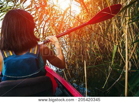 Kayak Swims Through The Jungle.