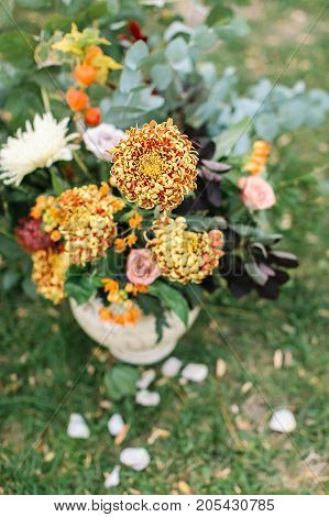floristic, wedding, party decoration concept. close up of bright sunny orange chrisantemums that are very well combined with delicate pinky roses and leaves of various plants