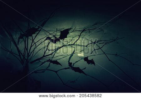 Decor of the silhouettes of bats on branches in a web in the night haze.