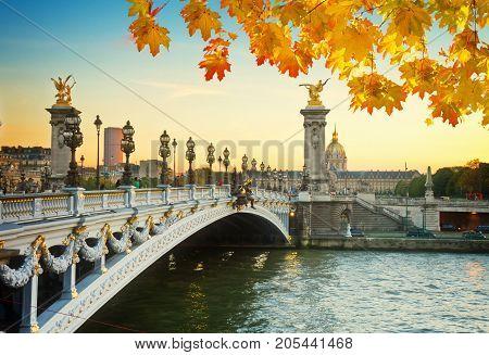 Alexandre III Bridge at fall sunset in Paris, France