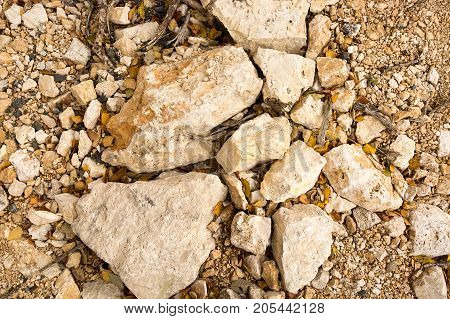 nature, backdrop, minerals concept. close up of stones that have light creamy shade, between them there are few dead leaves of trees that are growing on the mountain