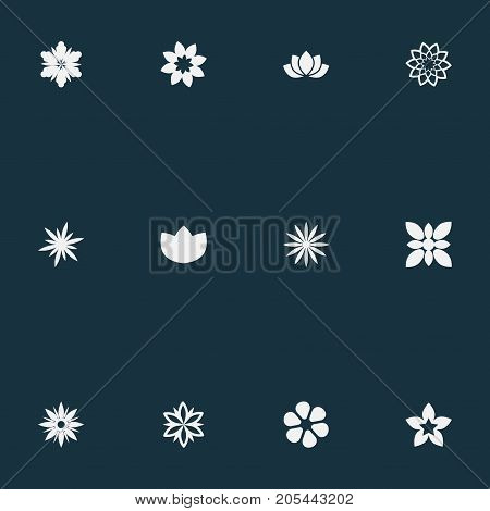 Elements Morning Glory, Ornament, Camellia And Other Synonyms Jonquil, Peony And Delphinium.  Vector Illustration Set Of Simple Flower Icons.