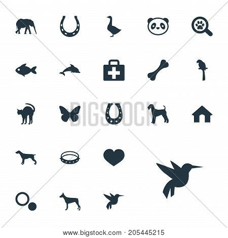 Elements Waterbird, Bear, Belt And Other Synonyms Box, Bear And Security.  Vector Illustration Set Of Simple Zoo Icons.