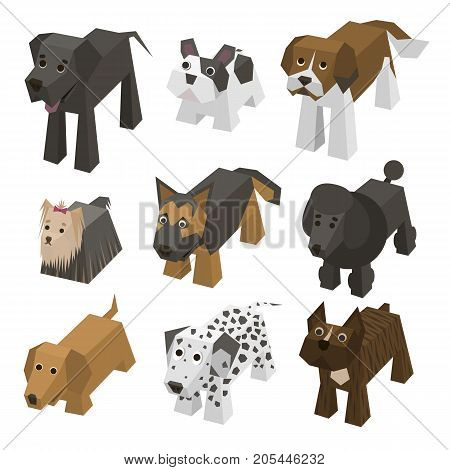 Vector set of different breed isometric dogs. Isolated cute isometry animals. Elements of geometric flat dogs for 3d game. Icon collection of domestic and home happy dogs. Dog, Bulldog, Boxer, badger-dog poster