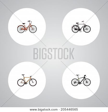 Realistic Timbered, Hybrid Velocipede, Retro And Other Vector Elements