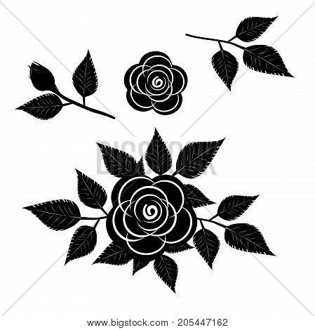 black rose silhouette on white background. vector