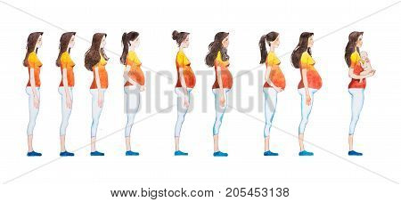 Cartoon illustration of pregnancy stages. Side view image of pregnant woman showing changes in her body.