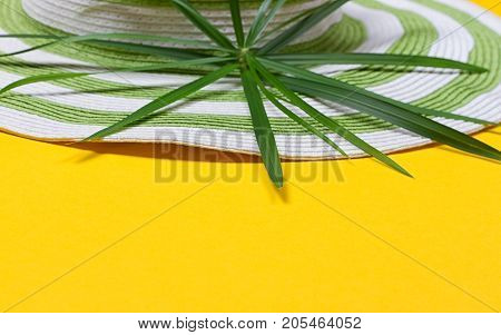 Beach hat and coconut leaves on yellow background