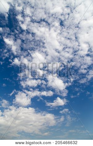 beautiful clouds in the sky . In the park in nature