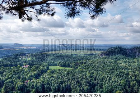 super nature in bad schandau suitable as a background or abstract