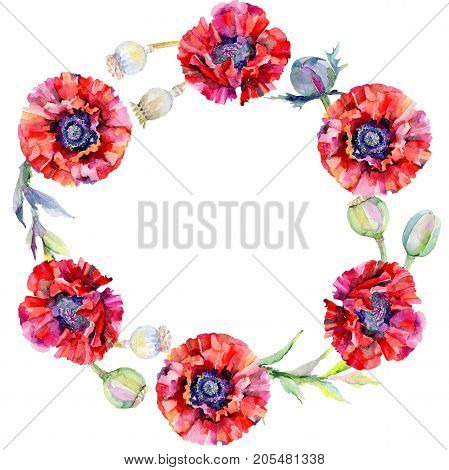 Wildflower poppy flower wreath in a watercolor style. Full name of the plant: red poppy. Aquarelle wild flower for background, texture, wrapper pattern, frame or border.