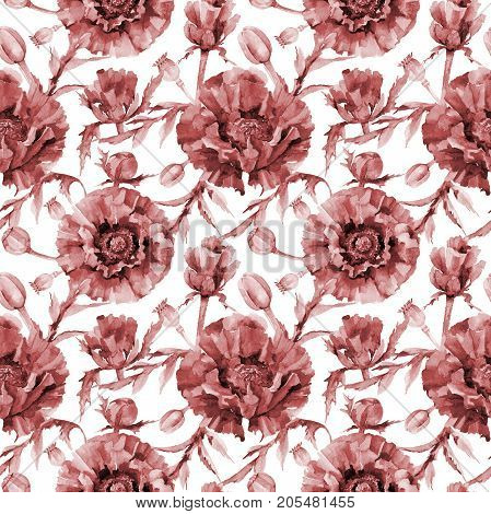 Wildflower poppy flower pattern in a watercolor style. Full name of the plant: red poppy. Aquarelle wild flower for background, texture, wrapper pattern, frame or border.