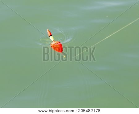 float for fishing in water . In the park in nature