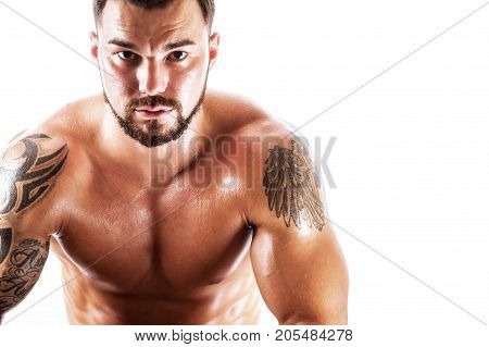 Portrait of confident fitness male model sitting and looking at the camera. Studio shot of athletic young man posing shirtless. Copyspace