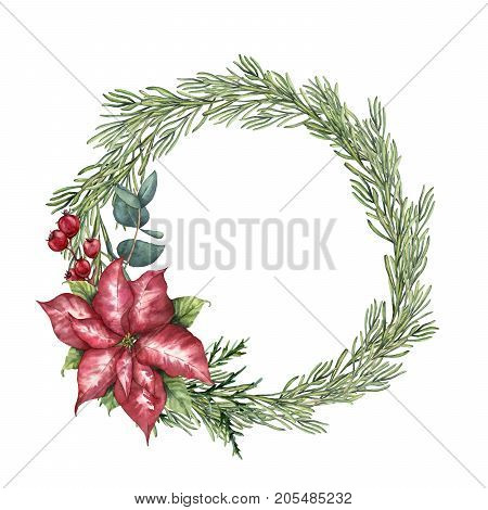 Watercolor Christmas floral wreath with rosemary. Hand painted rosemary branch, poinsettia, eucalyptus and crabapple isolated on white background. Floral botanical border for design or print