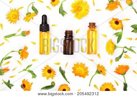 aromatherapy essential oil with marigold flowers isolated white background.