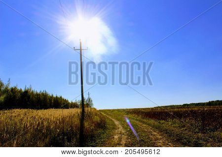 An electric pole against the background of a field, a forest and a blue sunny sky.