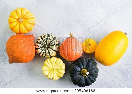 Varieties of pumpkins and gourds on the off white background, top view, copy space for text, selective focus