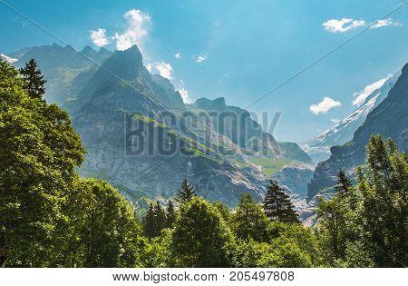Alpine Summer Scenery. Wetterhorner Massif in Switzerland Jungfrau Region.