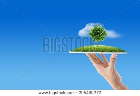 Hand holding tablet computer with grass and tree of nature background with environment concept.