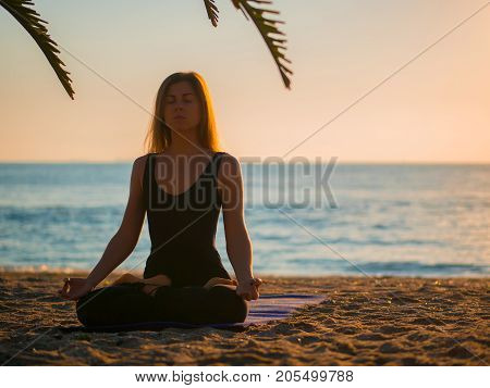 Beautiful young woman practicing morning yoga in lotus pose on tropical sea beach with tree palms.