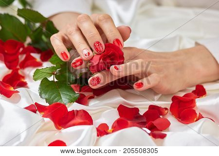 Fresh rose, female hands, petals. Valentine's day concept with rose petals on white silk. Romanic manicure and red rose.