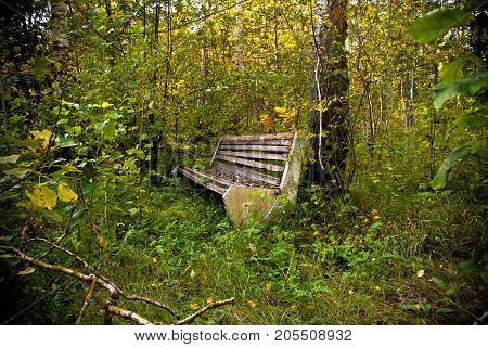An old bench in an abandoned overgrown park