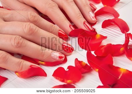 Woman red nails and rose petals. Female hands with red varnish on red rose petals, white wooden background.