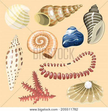 Sea marine animals and shells souvenirs cartoon vector illustration. Spiral tropical mollusk mussel decoration. Exotic snail aquarium beauty scallop nature seashell hand drawn sketch.