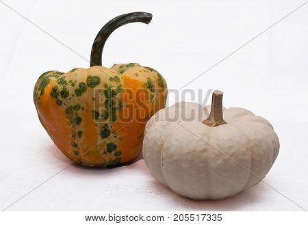 A white and a multi colored pumpkin