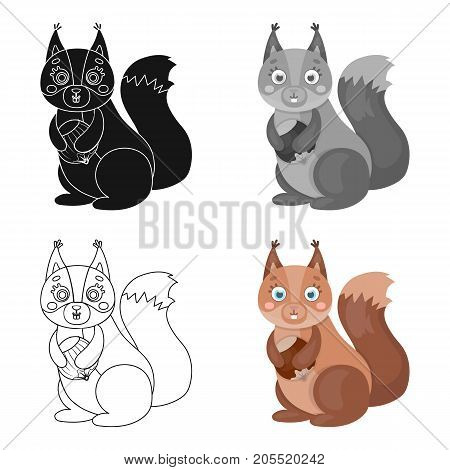 Squirrel, single icon in cartoon style.Squirrel, vector symbol stock illustration .