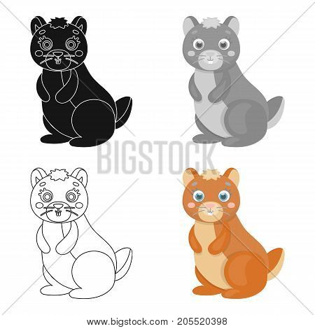 Kangaroo, single icon in cartoon style.Kangaroo, vector symbol stock illustration .