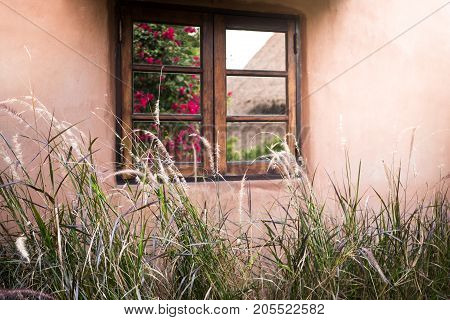 Flowers reflected in windows of small vacation house with morning light