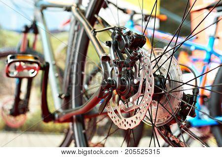 Brake Disk Of Sport Mountain Bike In Shop