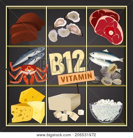 High vitamin B12 Foods. Healthy seafood, meat, fish, crab, cottage cheese, liver and oysters. Vector illustration isolated on a dark grey background.