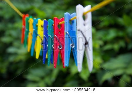 Colorful clothespins hanging on a clothesline. In the background are the trees.