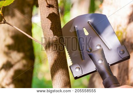 A Small Tourist Shovel, Which A Man Holds In His Hand In The Forest.
