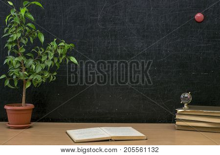 Teacher or student desk table. Education background. Education mockup concept. Handbook (textbook) book globe and green plant tree on blackboard (chalkboard) background.