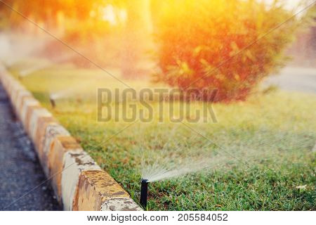 Lawn sprinkler spaying water over green grass. Irrigation system of street