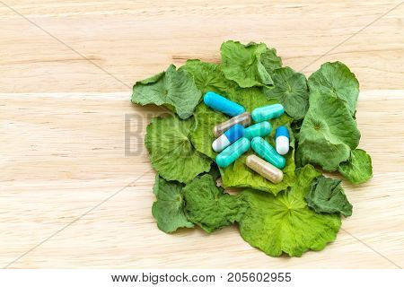 Close up dry of Asiatic Pennywort (Centella asiatica Hydrocotyle umbellata L or Water pennywort ) and colorful pill on wooden background