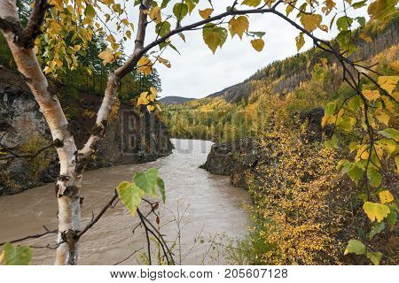 Autumn landscape in Kamchatka: mountain river flowing among roky mountain through the colorful forest. Kamchatka Peninsula Russian Far East Eurasia.