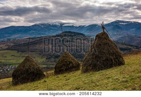 Haystacks On Grassy Meadow In Autumn Mountains