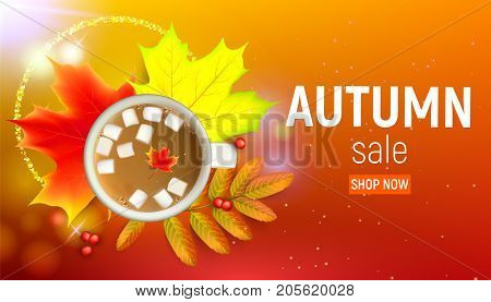 Sales banner with maple autumn leaves and rowan branches with ashberry and cup of coffee with marshmallow on a orange background. Autumn maple leaf and rowan branches with ashberry and cup of coffee with marshmallow on a orange background. Vector illustra