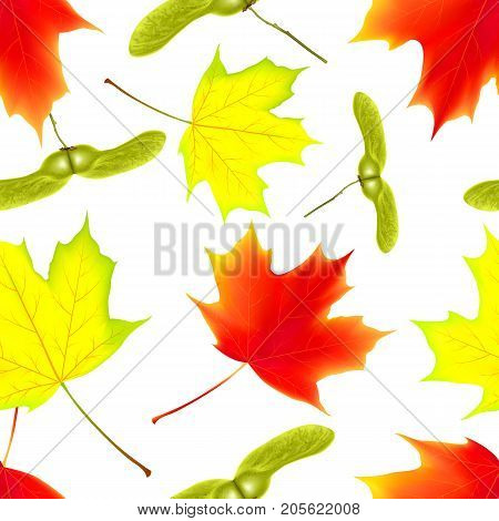 Seamless pattern with autumn falling maple leaves. Falling maple leaves. Vector illustration