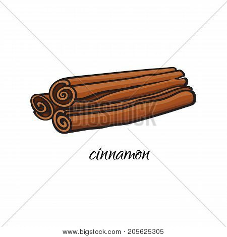 vector flat cartoon sketch style hand drawn dry cinnamon, canella sticks image. Isolated illustration on a white background. Spices , seasoning, flavorings, condiments and kitchen herbs concept.